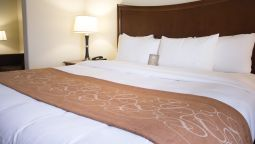 Room Comfort Suites San Antonio North Stone Oak