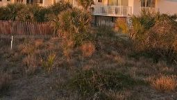 Hotel BEACH HOUSE AT THE DUNES-TYBEE ISLAND