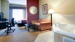 Suite Comfort Suites Fort Stockton