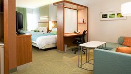 Room SpringHill Suites Philadelphia Airport/Ridley Park
