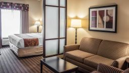 Room Comfort Suites West of the Ashley