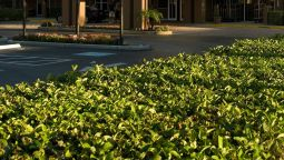 Fairfield Inn & Suites Orlando Lake Buena Vista - Lake Buena Vista (Florida)