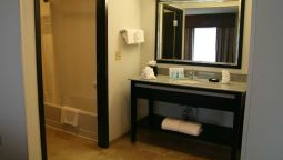 Room Hampton Inn and Suites-Detroit-Airport-Romulus