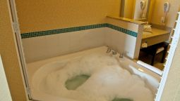 Kamers Holiday Inn Express & Suites DETROIT NORTH - TROY