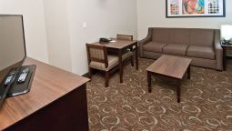 Kamers Holiday Inn Express & Suites SAN ANTONIO SE BY AT&T CENTER