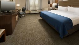 Room Holiday Inn Express & Suites WACO SOUTH