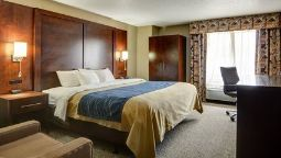 Room Comfort Inn & Suites Conway