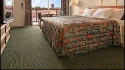 DOWNTOWN INN AND SUITES - Asheville (North Carolina)