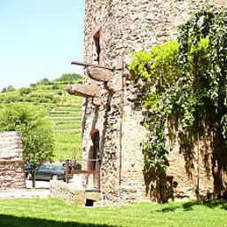 Le_Chambard_Chateaux_et_Hotels_Collection-Kaysersberg-Garden-27951.jpg
