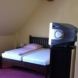 Schwanen_Gasthof-Leimen-Room-1-30134.jpg
