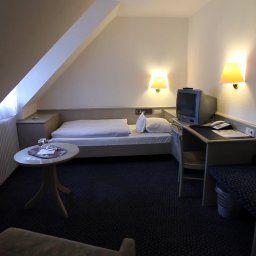 Hirschengarten-Freiburg-Room-5-38381.jpg