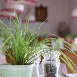 Loewen_Landgasthof-Nesselwang-Restaurant-2-44207.jpg