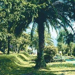 Ogród Leonardo da Vinci Prices All Inclusive