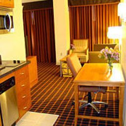 Suite Residence Inn Atlanta Downtown