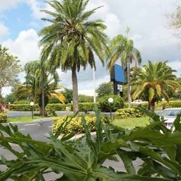 Vista esterna Quality Inn & Suites at Tropicana Field
