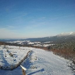 Bild Mooshütte Berghotel