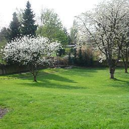 Villa_Falkenberg-Dusseldorf-Garden-1-391742.jpg