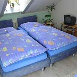 Koenigswald_Hotel_Pension-Dresden-Double_room_superior-2-408000.jpg