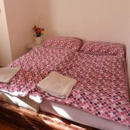Chambre double (standard) Tara Pension Prague (Praha)