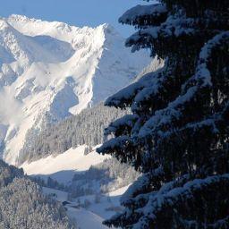 Foto Luxus Chalet Mühlermoos Hütte
