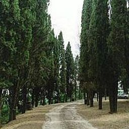 Vocabolo_Palazzo_Agriturismo-Corciano-Garden-438481.jpg