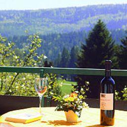 Talblick-Dobel-View-455292.jpg