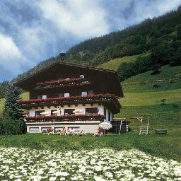 info Bauernhof Ganzenhubhof