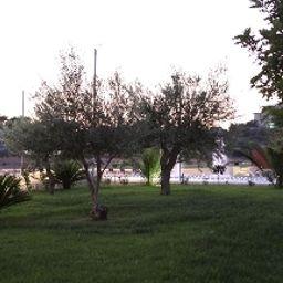 Jardin Borgo Don Chisciotte