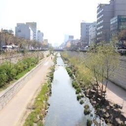 Sutton-Seoul-Surroundings-547148.jpg