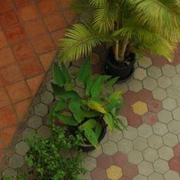 Check_Inn_Siem_Reap-Siem_Reap-Garten-1-549286.jpg