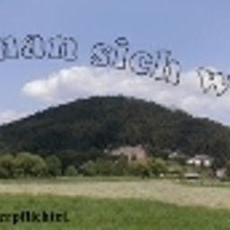 Entorno Zur Aue Gasthof - Pension