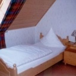 Habitación individual (estándar) Zur Aue Gasthof - Pension