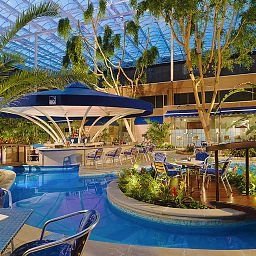 Piscine Sheraton Skyline Hotel London Heathrow