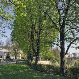 RIMES EN IMAGES - Page 3 Parc_Plaza-Luxemburg-Umgebung-83826