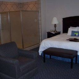 Room Hampton Inn Mt Airy