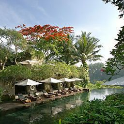 Piscine Maya Ubud Resort & Spa