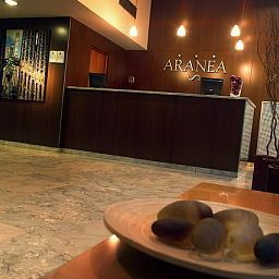 Reception Aranea