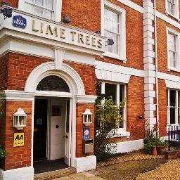 Lime Trees Northampton