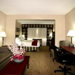 Suite Holiday Inn Express Hotel & Suites TORONTO-MISSISSAUGA