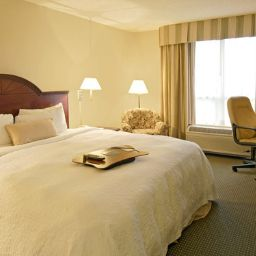 Chambre Hampton Inn by Hilton Toronto-Mississauga West