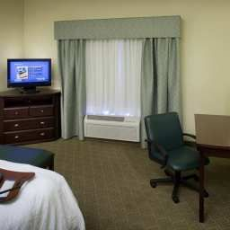 Chambre Hampton Inn - Suites Dallas-Arlington-South