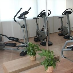 Fitness Ramada Hotel and Suites Vienna