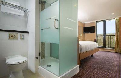 Pokój Hilton Birmingham Metropole