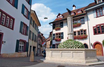Info Basel Radisson Blu Hotel