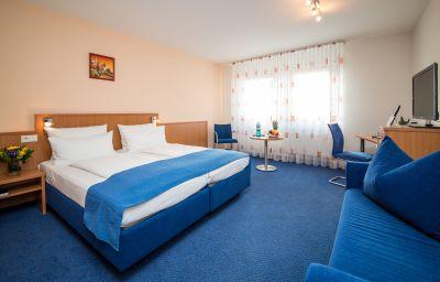 Double room (standard) Goldener Pflug