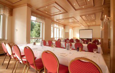 Panacee_Grand_Hotel_Roemerbad-Badenweiler-Conference_room-2-4557.jpg