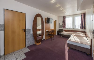 Breslauer_Hof_am_Dom-Cologne-Double_room_standard-3-5232.jpg