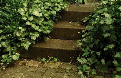 NH_Frankfurt_Villa-Frankfurt_am_Main-Garden-1-31055.jpg