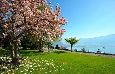 Victoria-Montreux-Garden-2-33474.jpg