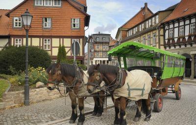 Harzhotel-Guentersberge-Surroundings-8-34997.jpg